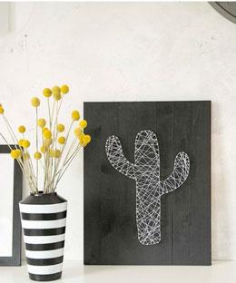 cactus-hilorama