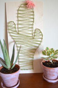 cactus hilorama